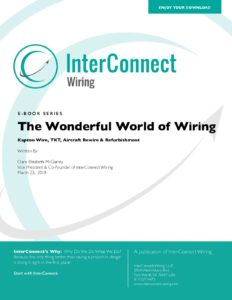INCT_ebookII_180326-pdf-232x300